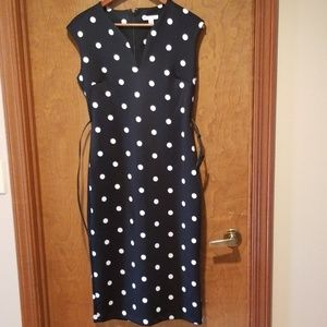 New York & Company Pokadot Dress Medium